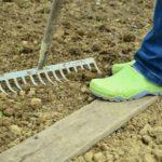 Selbstversorger-Garten - eine Anleitung für Einsteiger